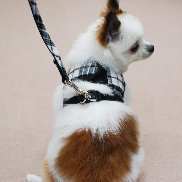 ASHUウェアハーネス ウールチェックセット Sサイズ(小型犬用) ※無くなり次第終了