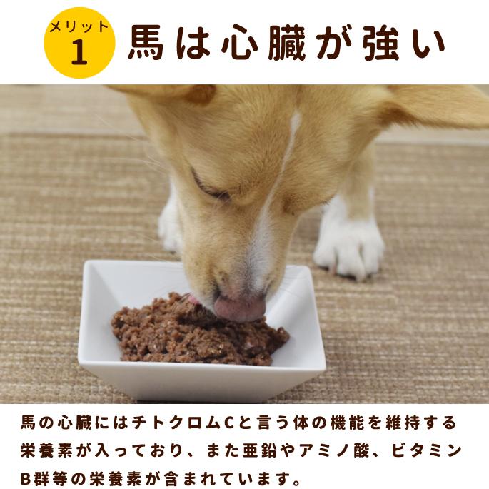 犬用生肉|冷凍 馬肉ハツ入りミンチ小分けトレー 10kg+1kg※愛猫にもご利用いただけます
