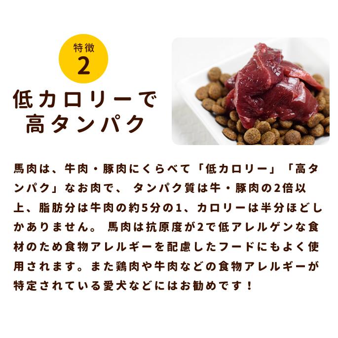 犬用 生馬肉 冷凍 国産馬肉 こま切れ 5kg 【まとめ買い】【a0301】※愛猫にもご利用いただけます