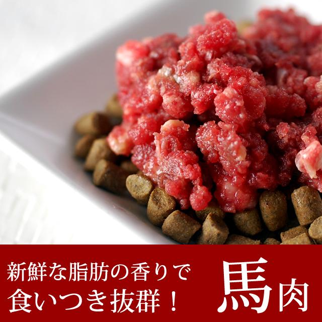 猫用 馬肉|冷凍生馬肉 荒挽き 小分けトレー  3kg [250g×12] カナダ・メキシコ産