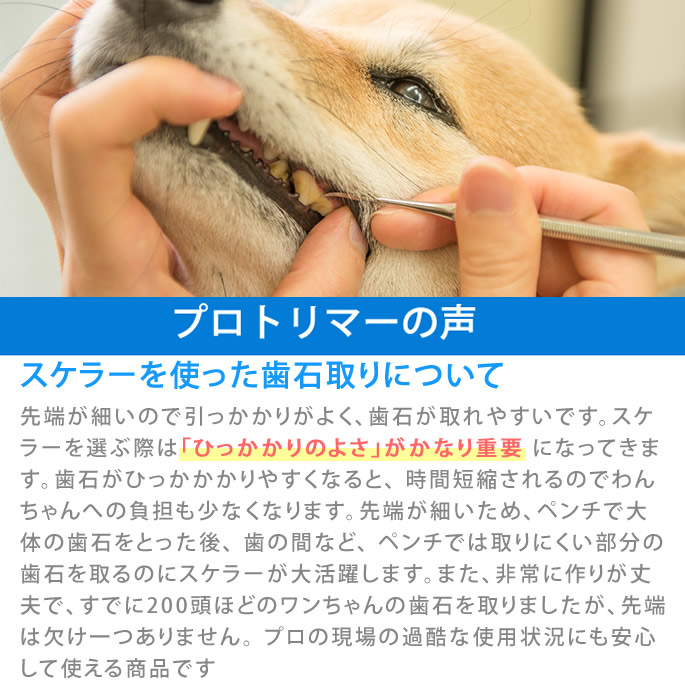 愛犬・愛猫用歯石取りスケーラー/ペンチ/【a0269】