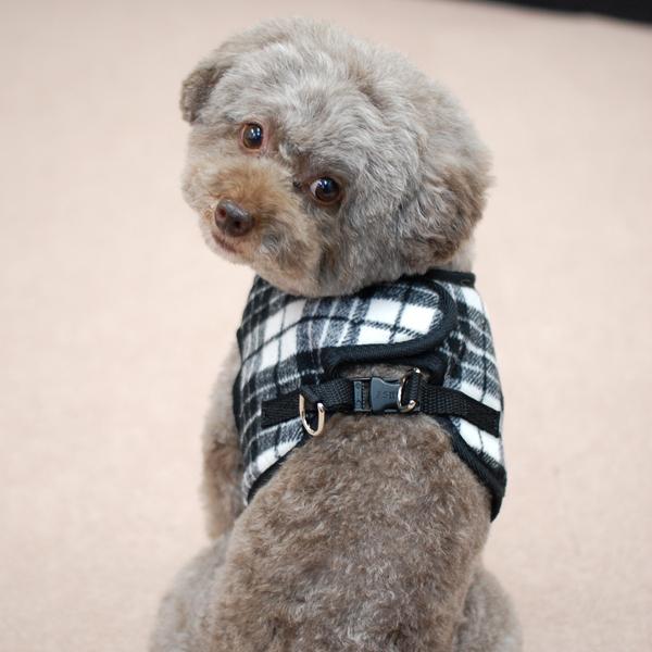 ASHUウェアハーネス ウールチェック  Sサイズ(小型犬用)【リードは別売り】※無くなり次第終了