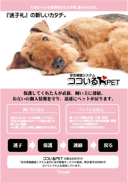 【ココいるPET】QRコード迷子札 BanbooAngel犬種別 日本初の画期的な特許システム
