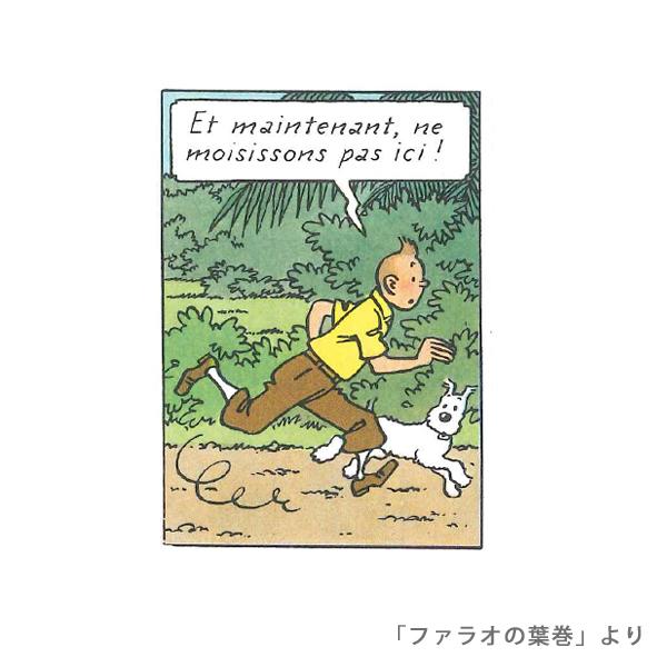 フェイスタオル/スノーウィ/タンタン19