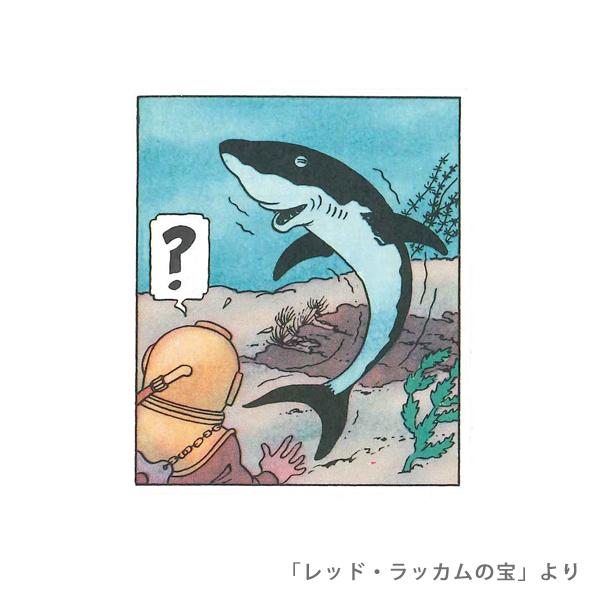ブレスレット/サメマリン