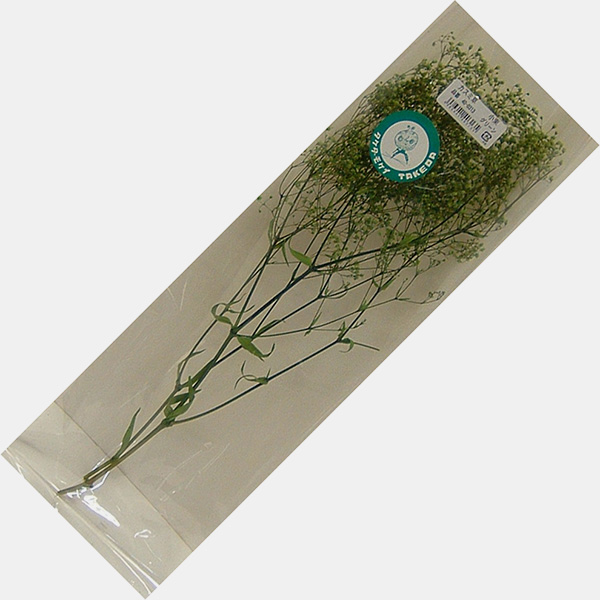 かすみ草 小束 【ホワイト・グリーン・エンジェルグリーン】 高さ約30cm