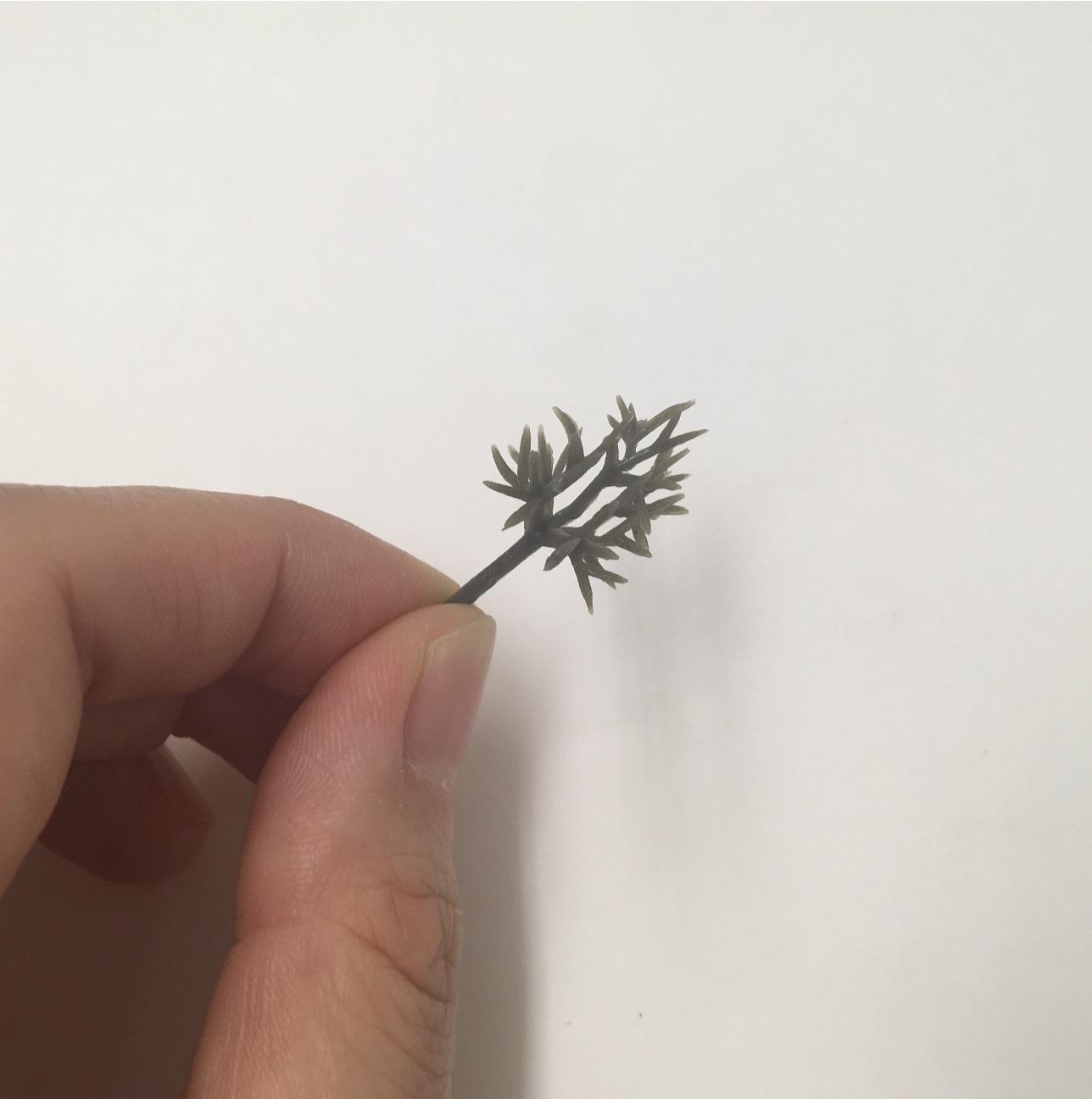 ジオラマ 樹木(枝)プラスチック製 (10個入)【40-0343】
