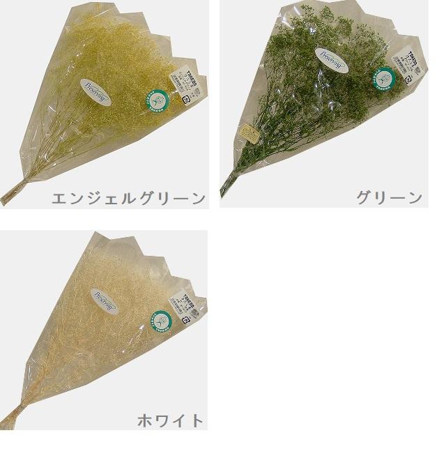 かすみ草 大束 【ホワイト・グリーン・エンジェルグリーン】 高さ約30cm