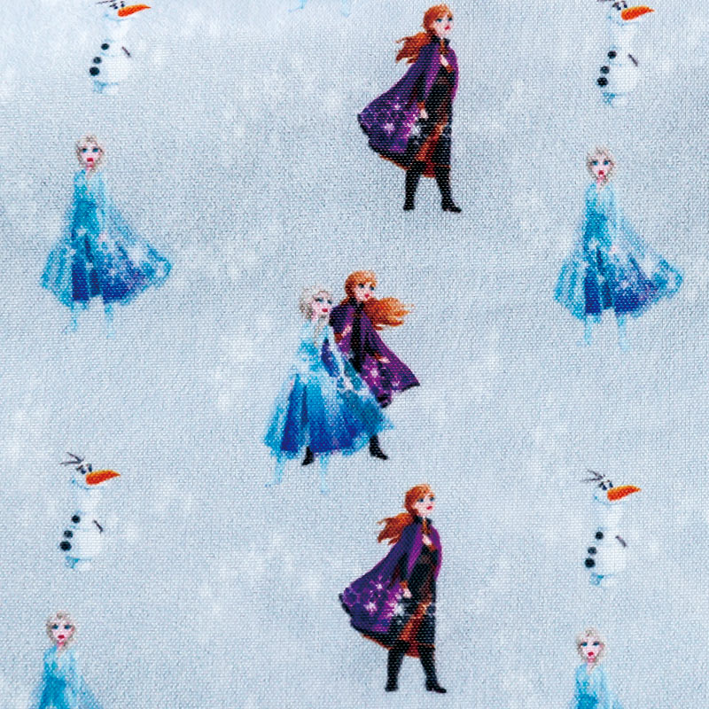 Disney アナと雪の女王2 SPECIAL BOOK