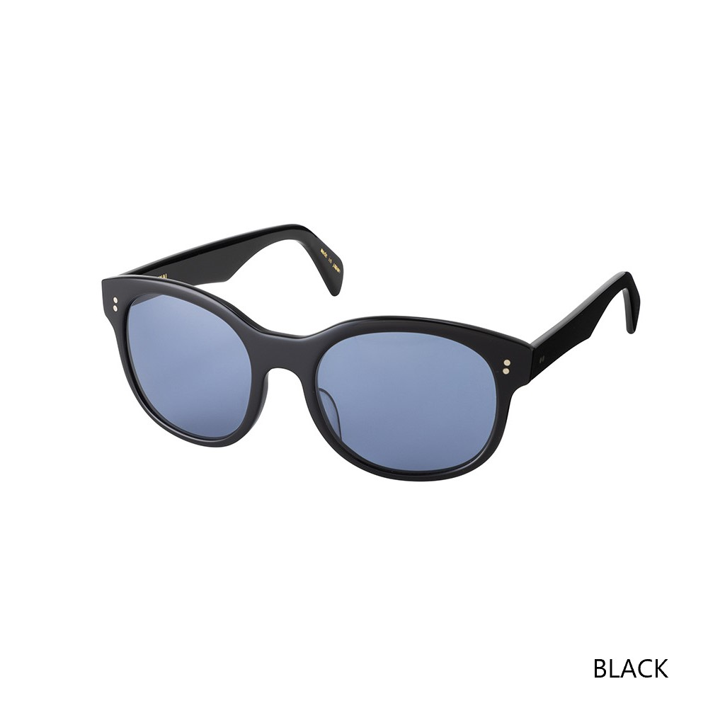 TRAVEL SUNGLASS