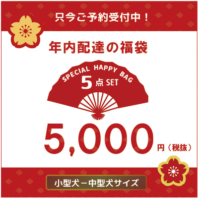 <予約商品12月上旬入荷予定>happy bag 5000