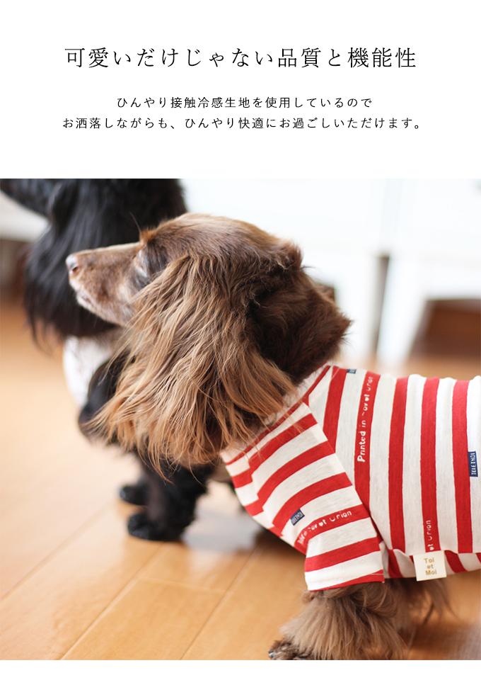 【特価】アイスコットン カジュアルBD TEE/4XL