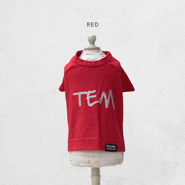 TEMラグランTシャツ