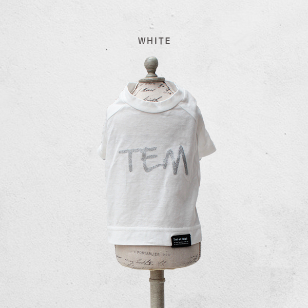 【特価】TEMラグランTシャツ/4XL