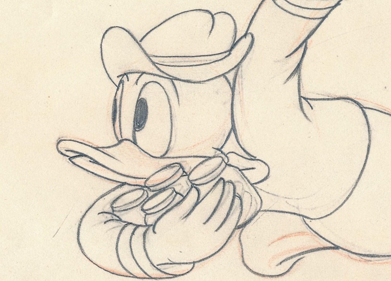 「ドナルドの頑張れミツバチ」で使われたドローイング