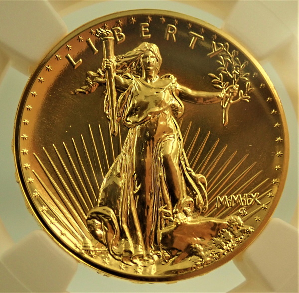 2009年にアメリカで発行されたウルトラ・ハイレリーフ20ドル、DPL