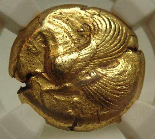 古代ミュシア、ランプサコスでBC500-540年に発行されたスターテル金貨、Fr-294