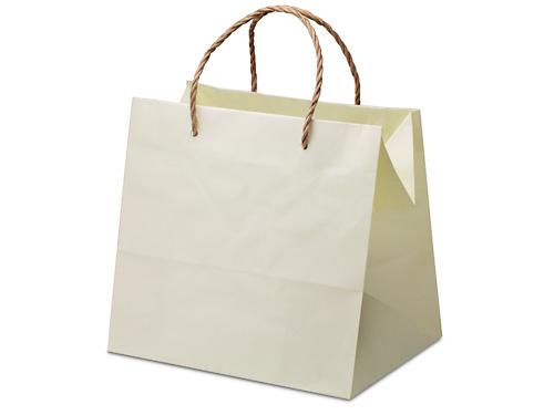 紙製手提袋 (幅250mm×高さ230mm×マチ幅190mm)