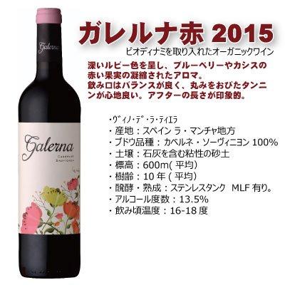 ガレルナ カベルネ・ソーヴィニヨン 2015 赤ワイン ミディアム ワイン&フラワーアレンジ 一緒に贈れるギフト