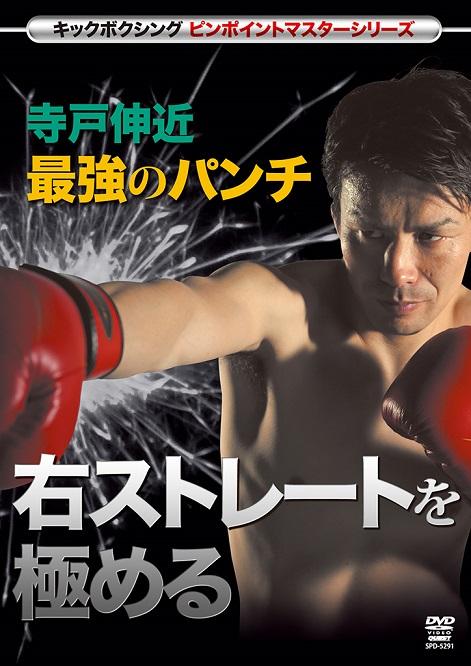 【DVD】キックボクシングピンポイントマスターシリーズ  寺戸伸近 最強のパンチ  右ストレートを極める