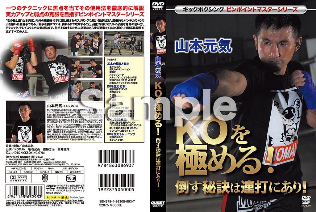 【DVD】キックボクシングピンポイントマスターシリーズ  山本元気  KOを極める!