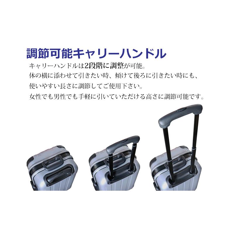 法人様限定 プロテクトPG2ハードキャリー Sサイズ スーツケース 鏡面加工 ハードケース