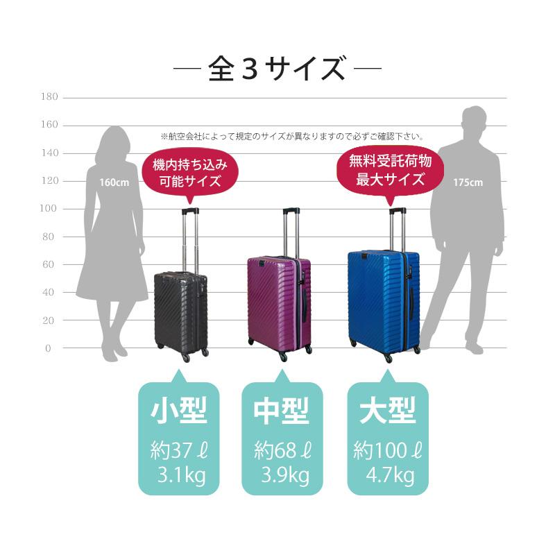 【法人様限定】TOMAXライトキャリー・Mサイズ 【3年保証付き】