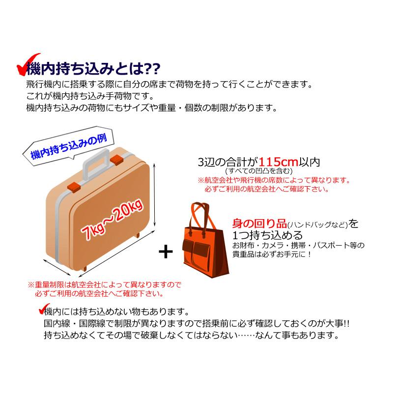 TOMAXライトキャリー・Sサイズ【3年保証付き】 送料無料