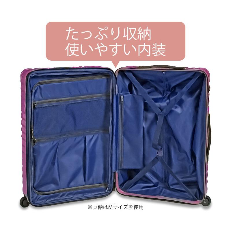 【アウトレット品】TOMAXライトキャリー・Lサイズ<1年保証>