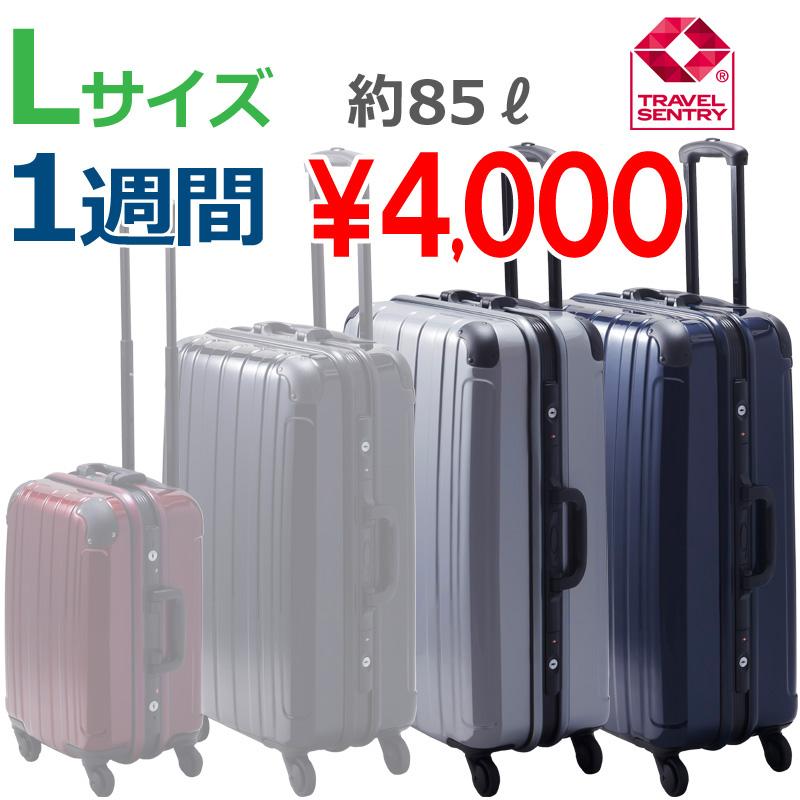 【Lサイズ 1週間】 プロテクトPG2ハードキャリー