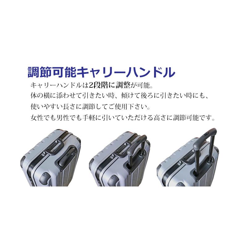 【Lサイズ 2週間】 プロテクトPG2ハードキャリー