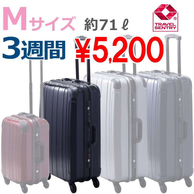 【Mサイズ 3週間】 プロテクトPG2ハードキャリー