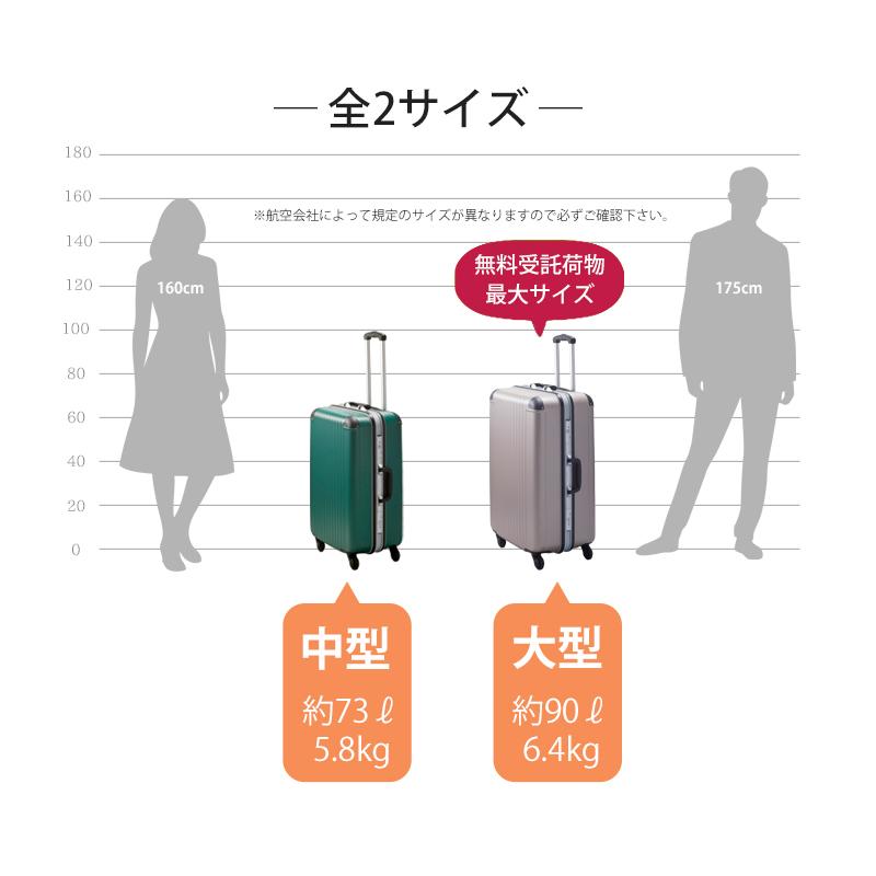 【Lサイズ 1週間】 エキスパートTG2ハードキャリー