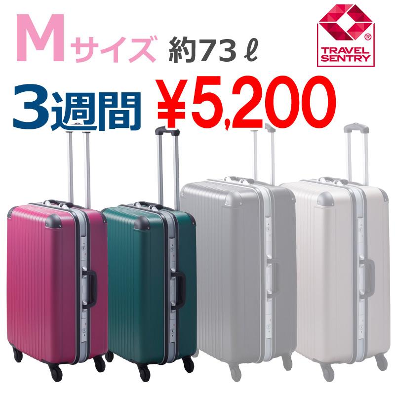 【Mサイズ 3週間】 エキスパートTG2ハードキャリー