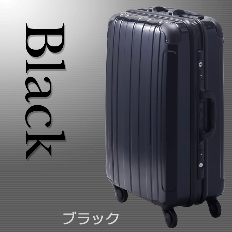 【Sサイズ 2週間】 プロテクトPG2ハードキャリー