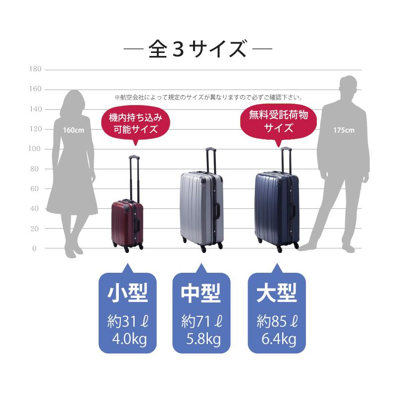 【Sサイズ 3週間】 プロテクトPG2ハードキャリー