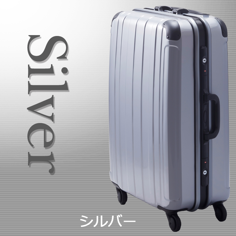 【Mサイズ 1週間】 プロテクトPG2ハードキャリー