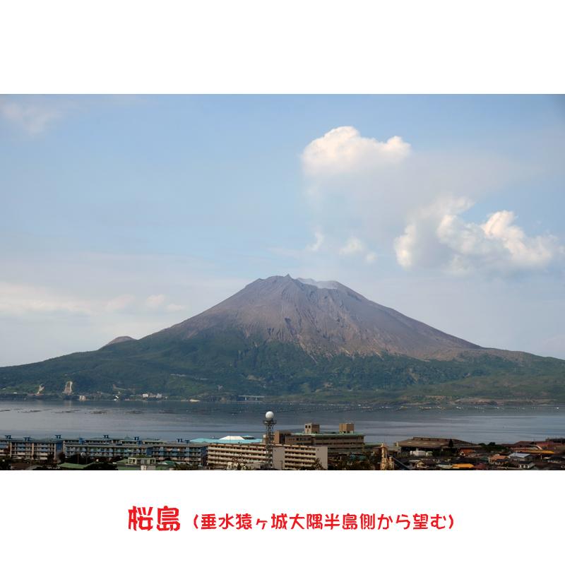 【八千代伝酒造】八千代伝 黒こうじ仕込み 1800ml
