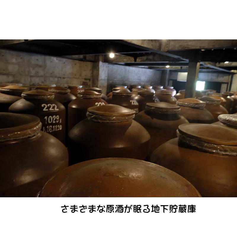 【八千代伝酒造】麦焼酎 千粒画布 (せんりゅうがふ)25度1800ml  【限定品】