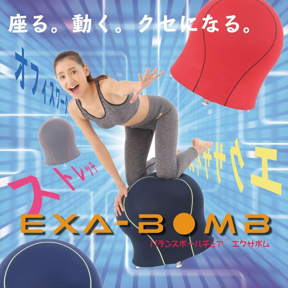 Exa-Bomb エクサボム おうちで気軽にエクササイズやストレッチができる椅子のようなバランスボール