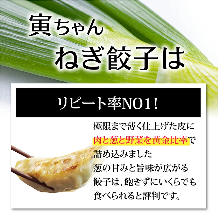 【送料無料】寅ちゃんねぎ餃子