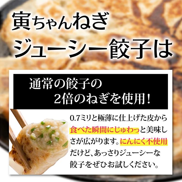 【送料無料】寅ちゃんねぎジューシー餃子