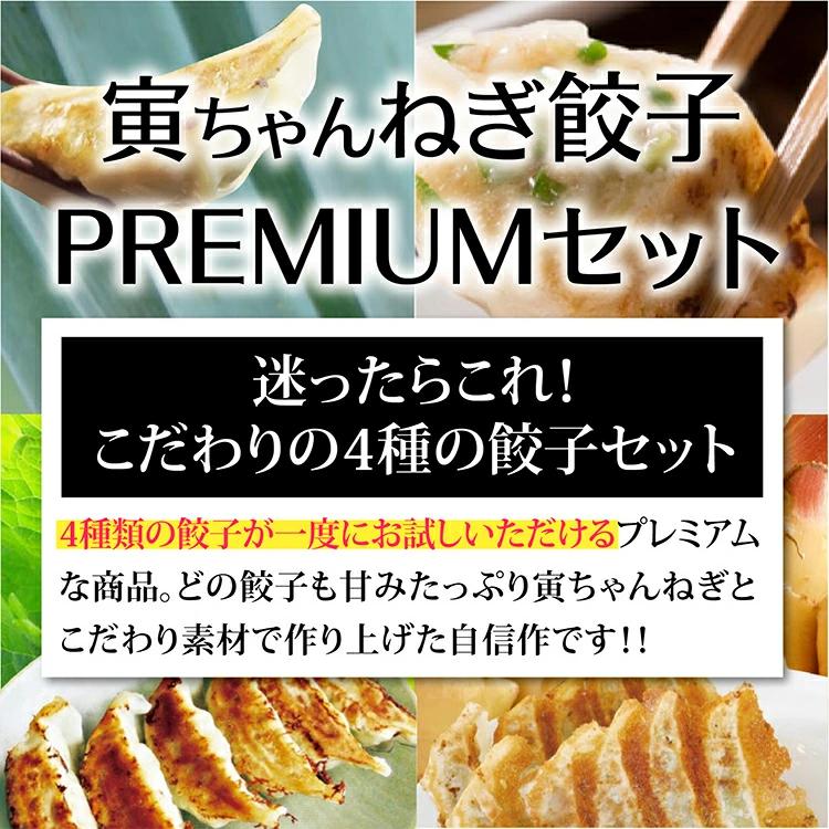 【送料無料】寅ちゃんねぎ餃子PREMIUMセット】(20個入り4種各一袋)
