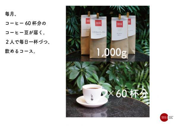コーヒー定期便 2人用
