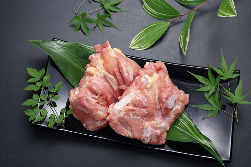 霧島鶏 もも