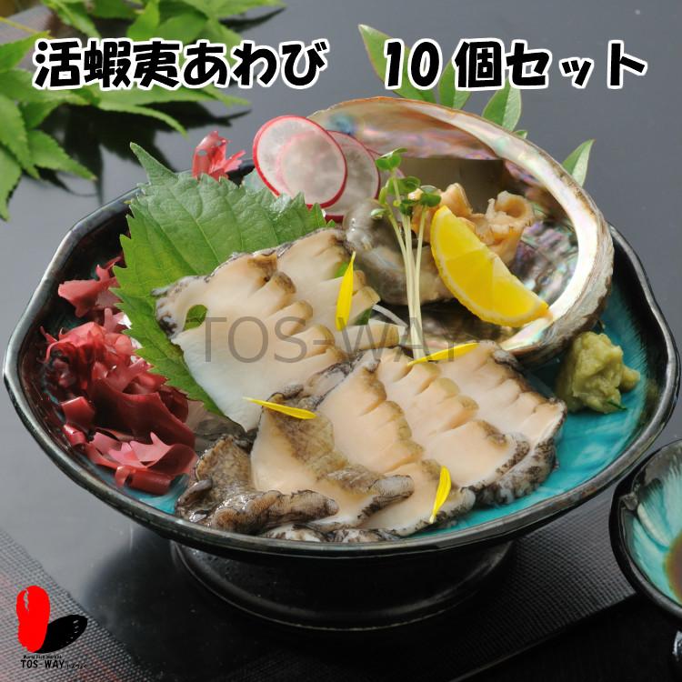 【活】活蝦夷あわび 90〜100g 10個セット
