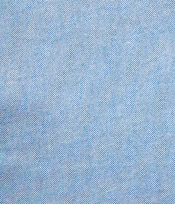 Lot No. SC28002 / SELVEDGE OXFORD BUTTON DOWN SHIRT