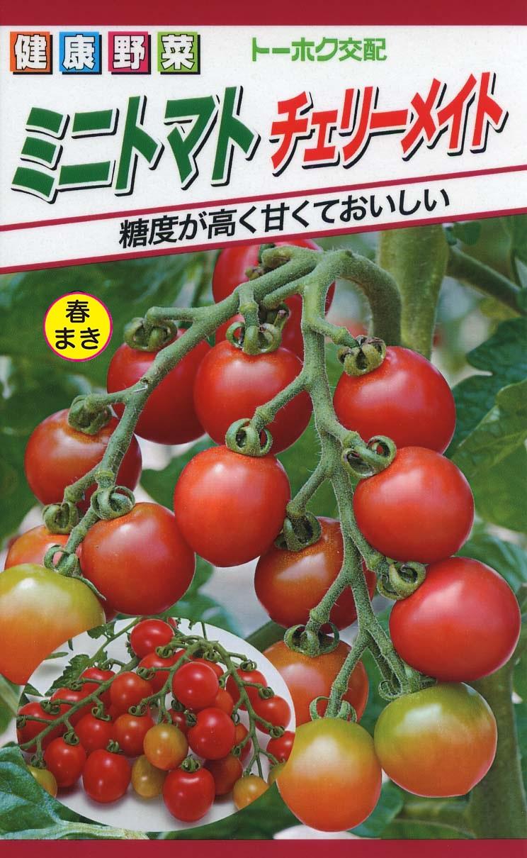 ミニトマト チェリーメイト