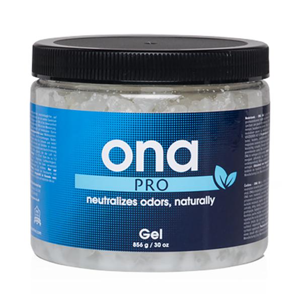 [ONA]  GEL