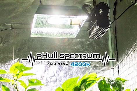 フルスペクトラム_CMH315W_4200K球(成長期用)